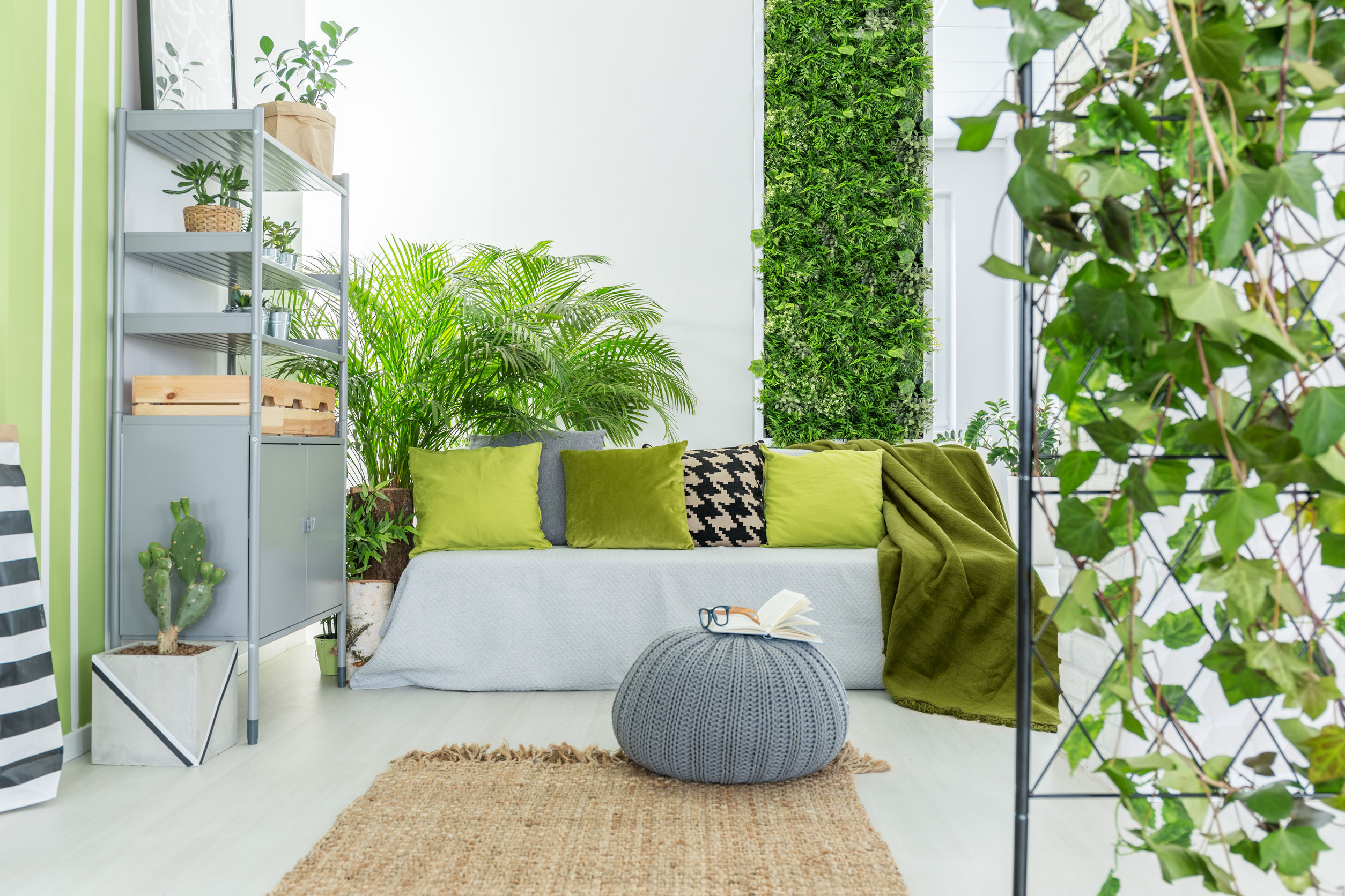 6 idées de décoration avec des plantes pour donner du style et de l'originalité à vos murs!