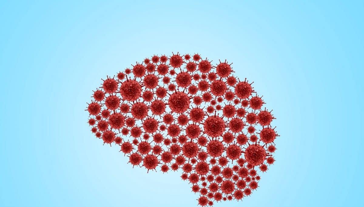 Le coronavirus favorise la formation des vaisseaux fantômes dans le cerveau